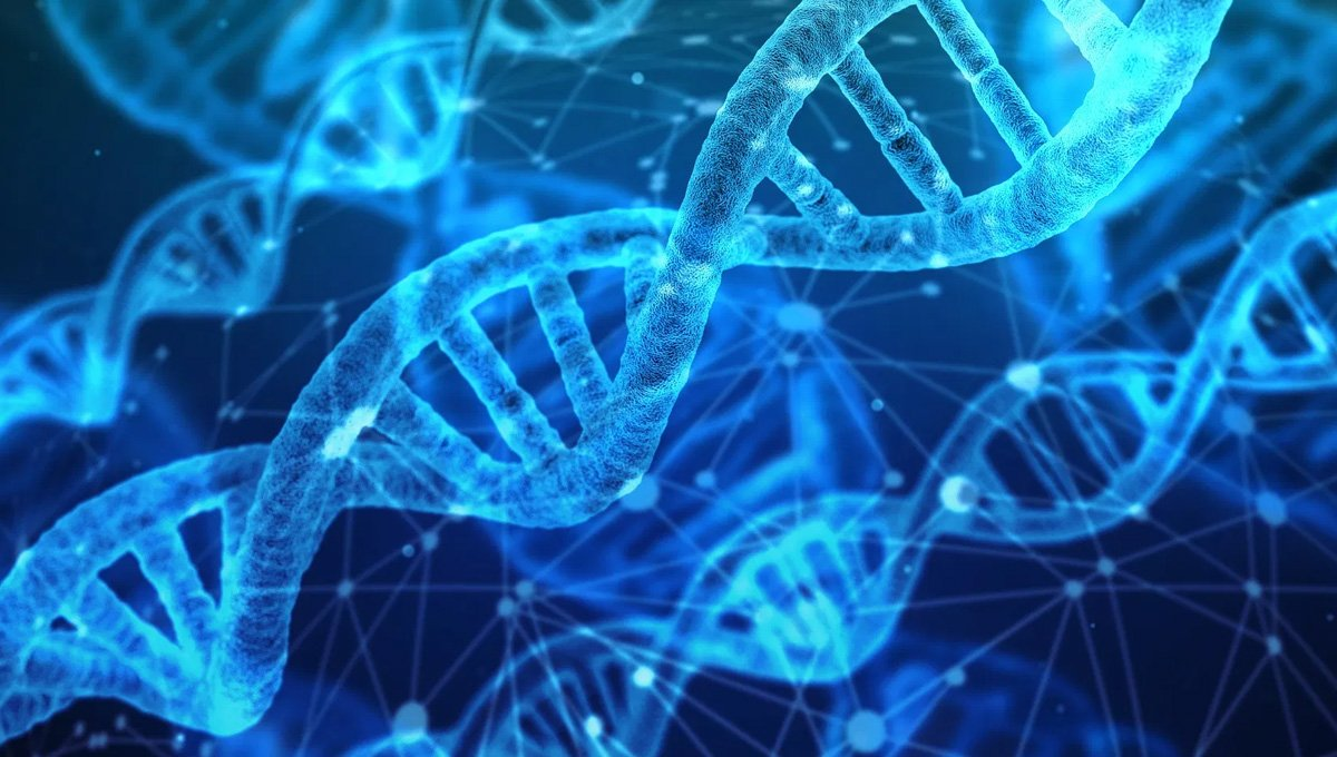 consorcio internacional secuencia por primera vez el genoma